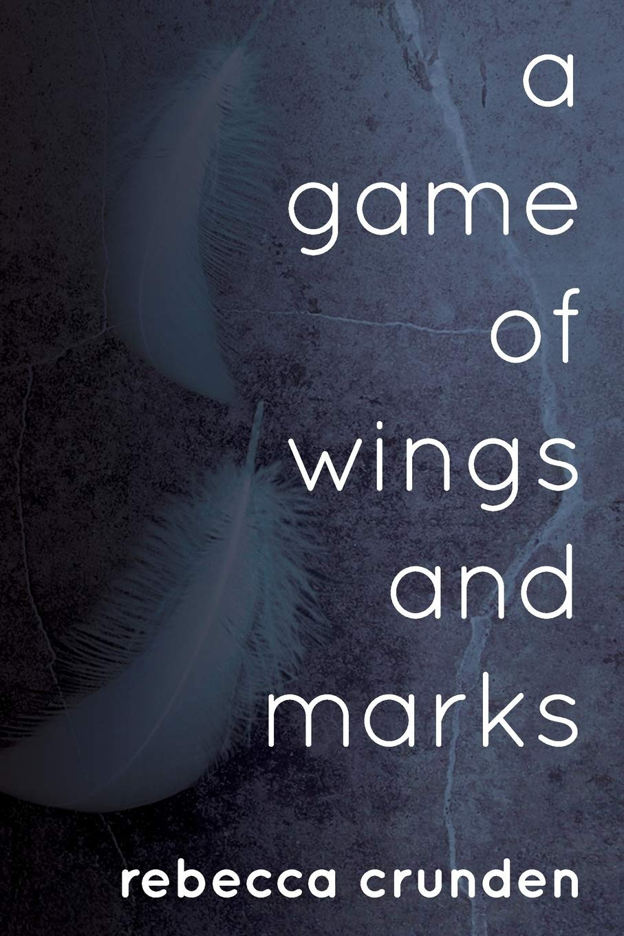 Book Review of A Game of Wings and Marks
