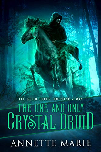 The One and Only Crystal Druid by Annette Marie | Top 5