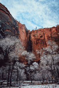orange rocks and waterfall in zion national park
