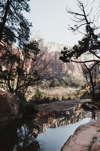 photo with reflection in water of Zion national park
