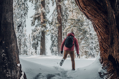 guy walking through the snow sequoia photography