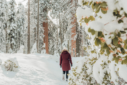 Girl walking in snowy forest red jacket