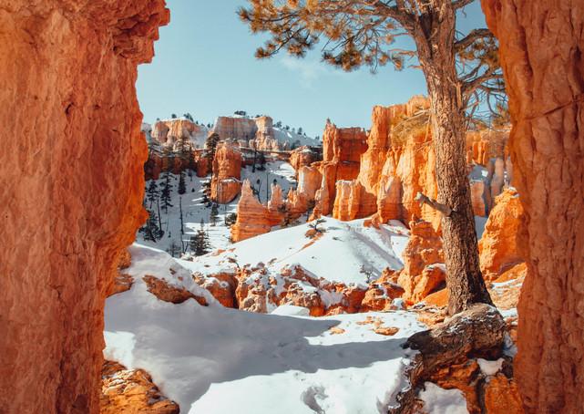 Winter fotografie tips Timothy De Ridder