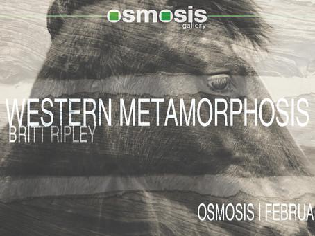 Western Metamorphosis  |  February 2017