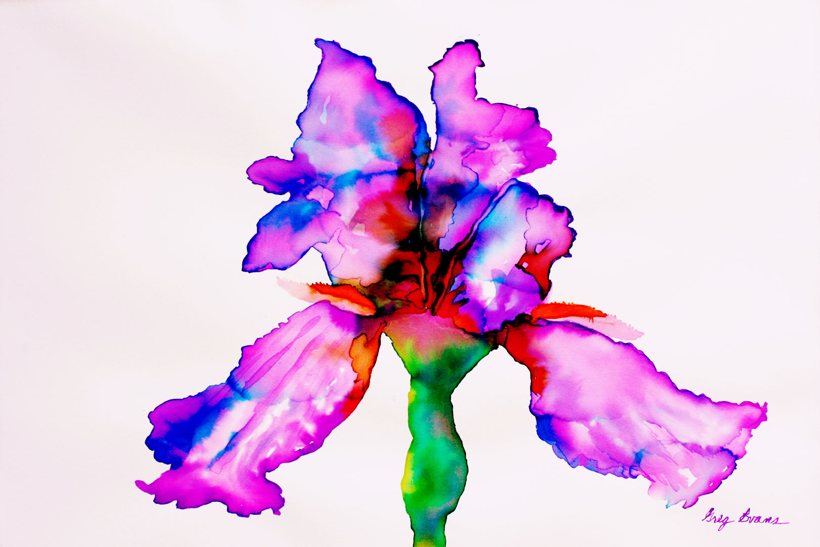Iris - Purple 4, 24x36.jpg