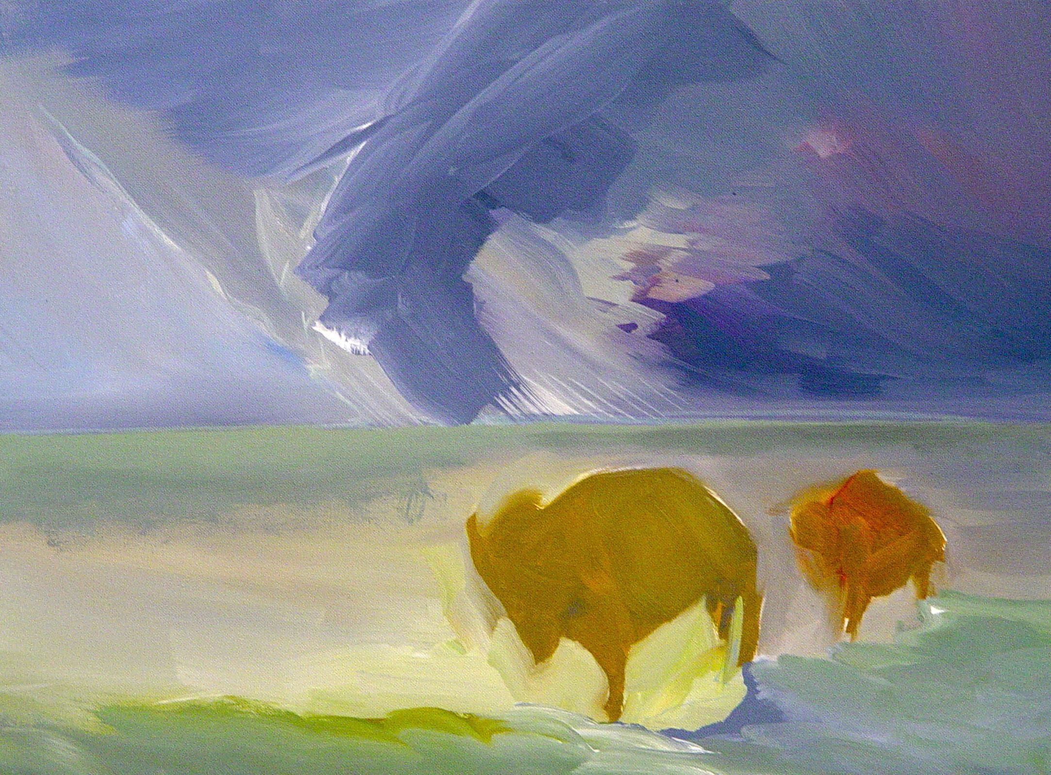 2 buffalo.JPG