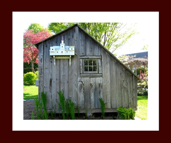 barn with birdhouse.jpg