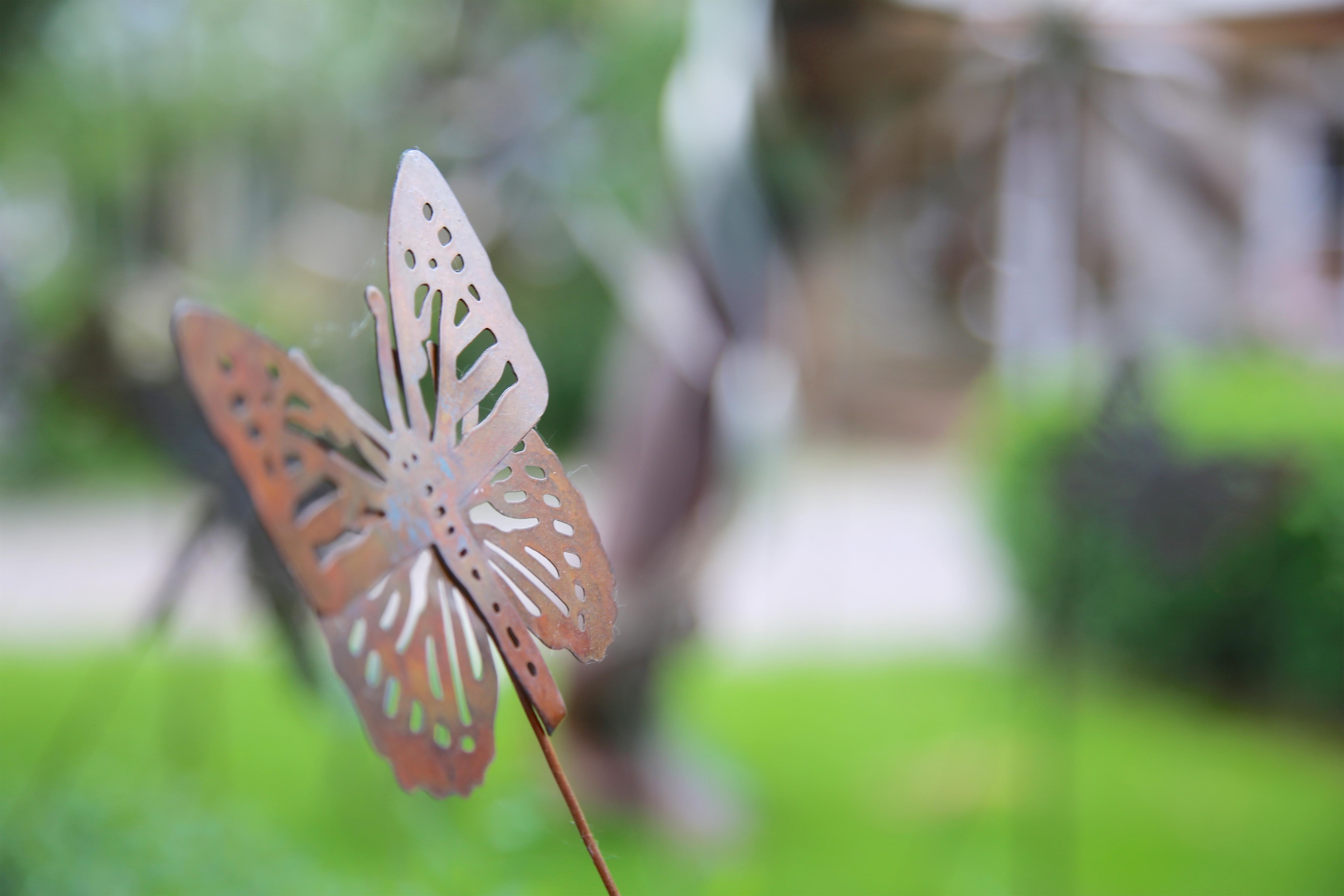 butterfly scuplture