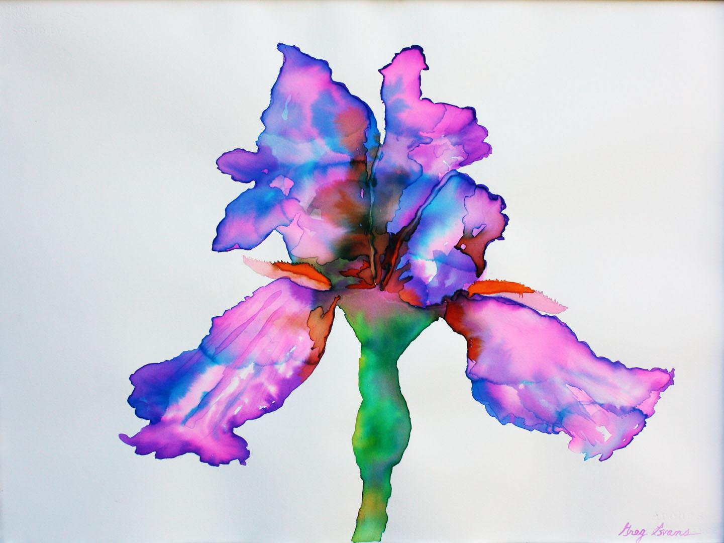 iris-purple.jpg