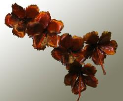 5 Hibiscus.jpg