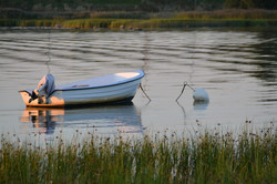 plantation-harbor-boat-water.jpg