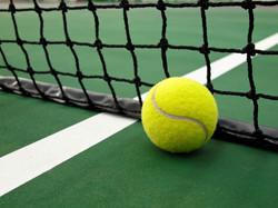 ball-net.jpg