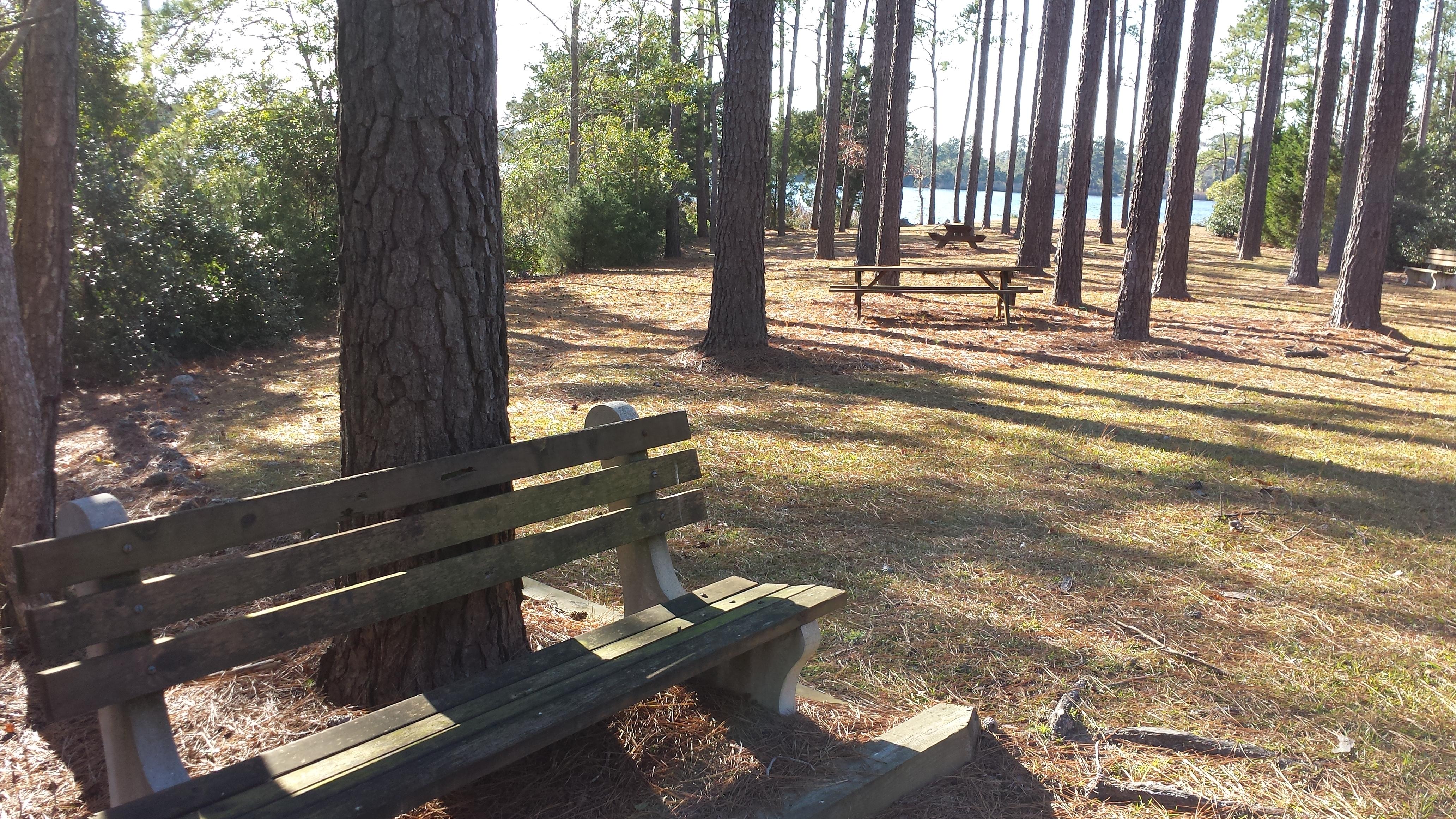 plantation-harbor-waterfront-picnic.jpg