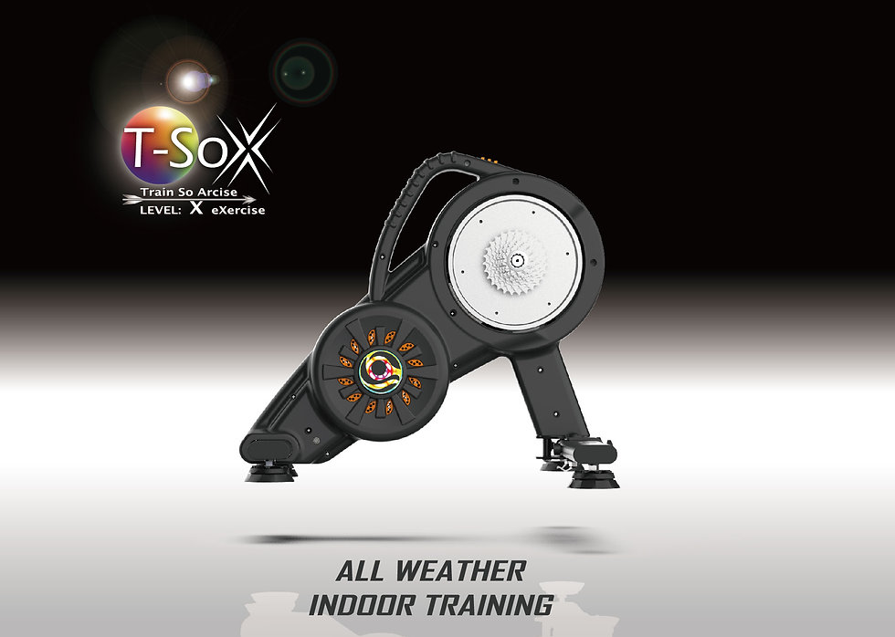 T-SoX Soarcise  -indoor  bike  trainer