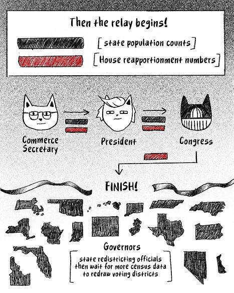COMIC- How Your State Gets Power Via The