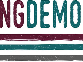 The Drawing Democracy Fund