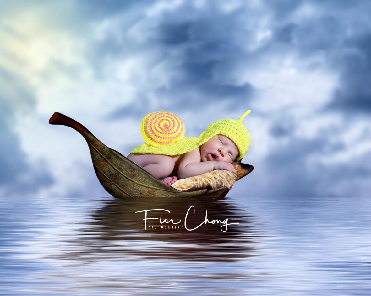 bebe-Liam_Newborn_cmposition_florchong.j
