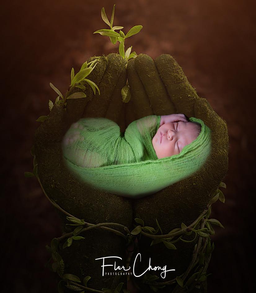 Baby_boy_Liam_Newborn.jpg