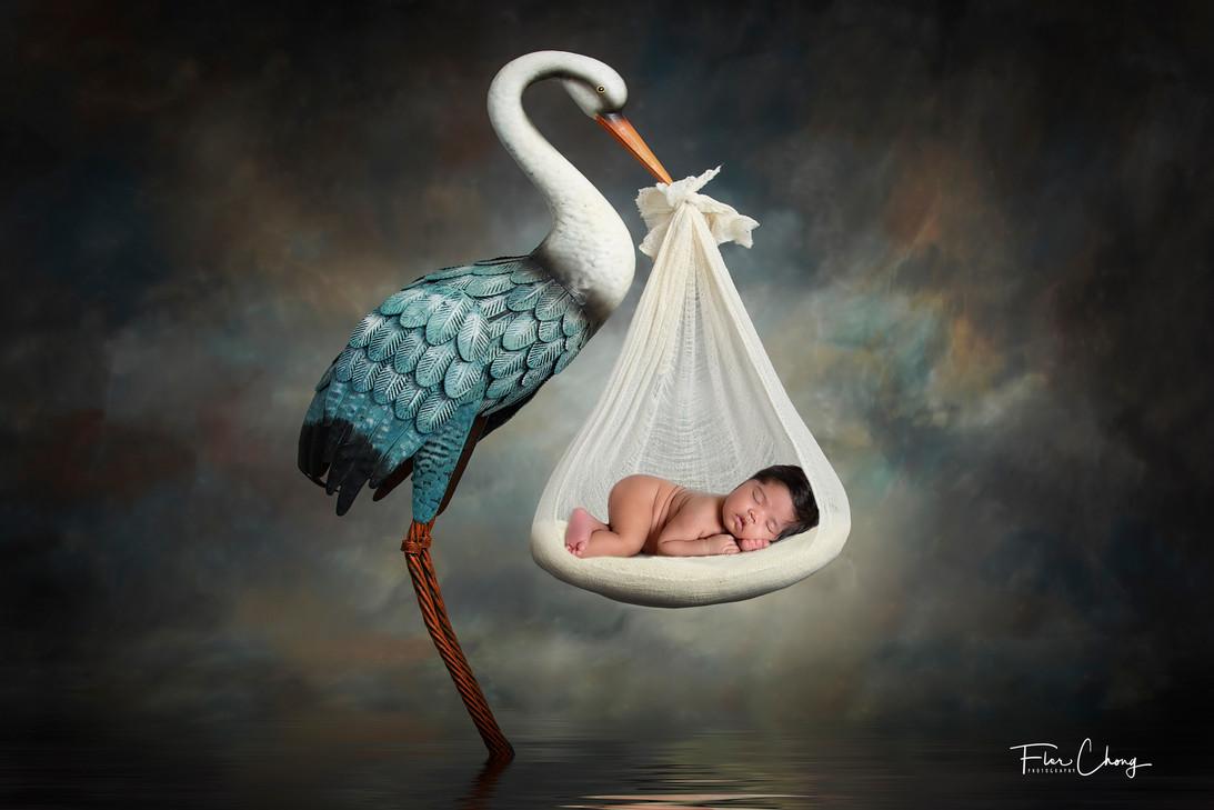 PedroJR_Newborn_FlorChongPhotography.jpg