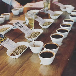 There is a saying, good cupping creates