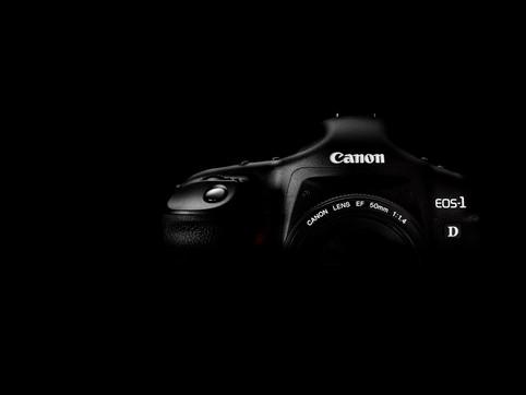 Der Weg von einer Canon DSLR, über eine Sony DSLM erneut zu einer 10 Jahre alten Canon DSLR.