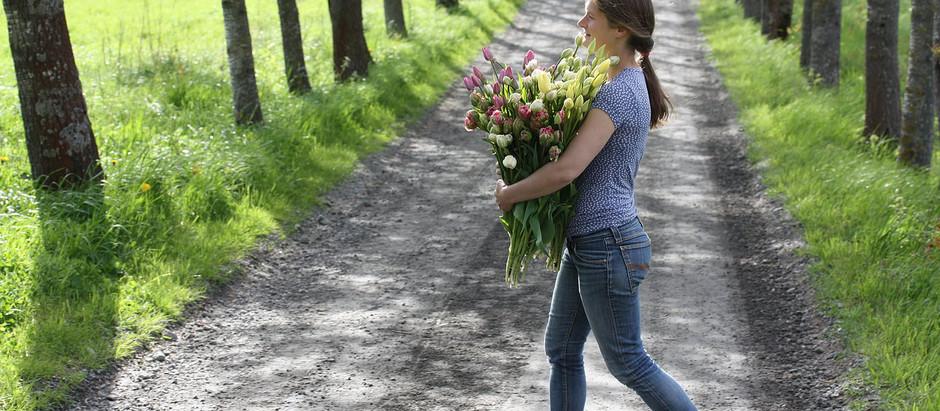 Løkplanter i buketter