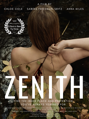 Zenith Poster with NYX laurels.png