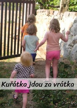 kzv-web