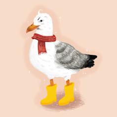 Dante the Seagull