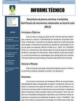 Informe Técnico 2 -  Resistência de plan