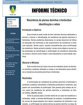 Informe Técnico 1 2021.png