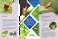 IRAC-BR disponibiliza folder sobre o manejo da resistência do percevejo-marrom (Euschistus heros)