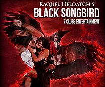 Black_songbird_300x250.jpg