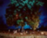 5.2 - LN+KG - Treehouse.jpg