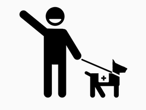 Getting to Know Service Animals