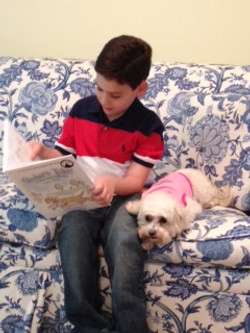 Daniel reading with Sophie