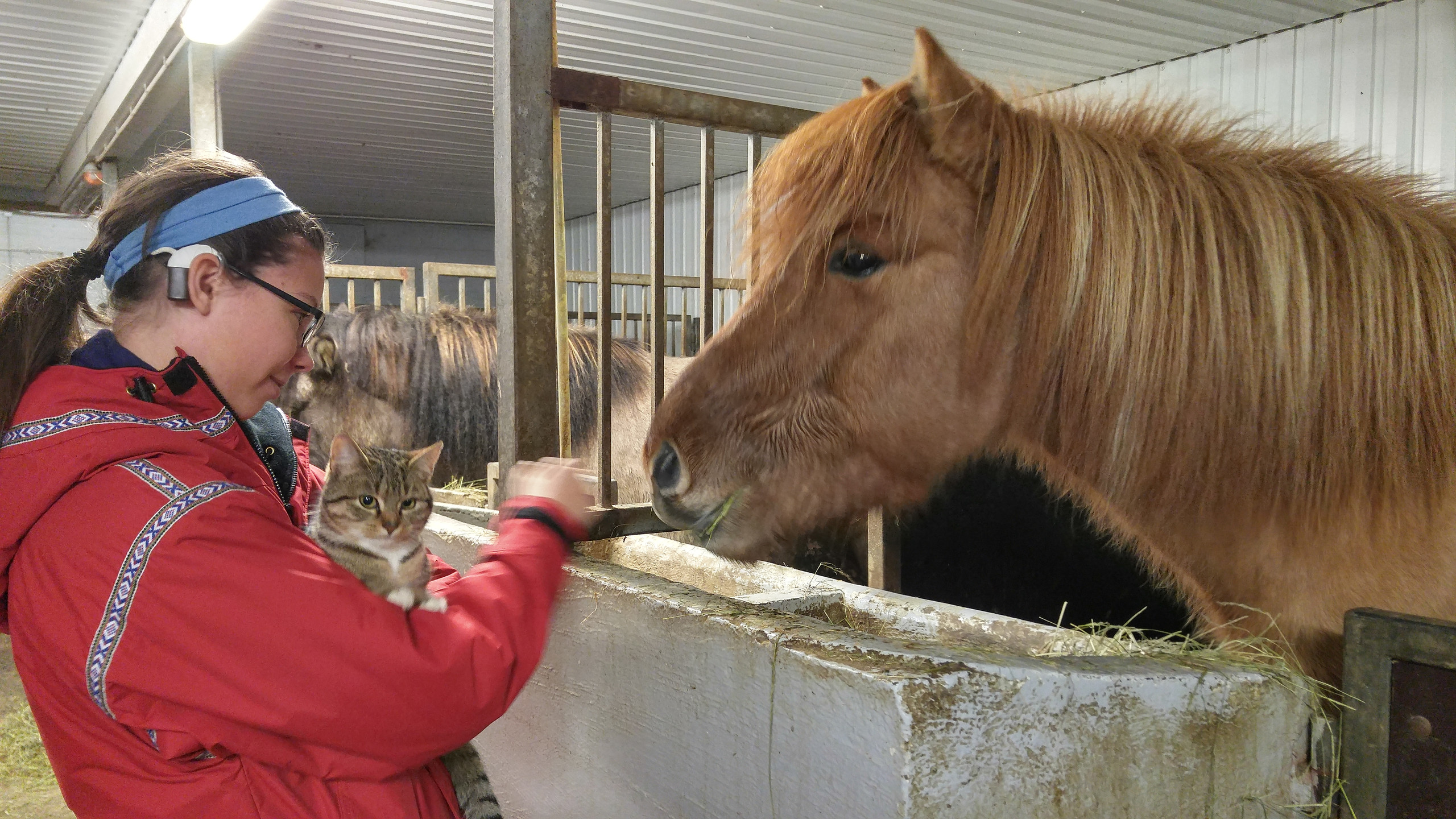 On the farm with hearing loss