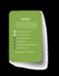 Online Basic Plan compressed.png
