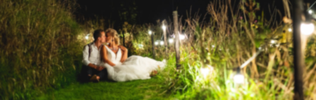 Bride& Groom kissing in grass wit fesoon lighting at outdoor edding venue, Norfolkl