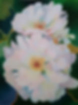 Translucent Floral - Jones Class.jpg