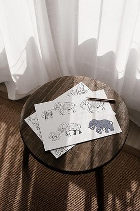 custom-hand-drawn-logos-monica-fawn-desi