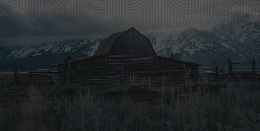 Aal-Together-Now-Farm-Denver-Colorado-62