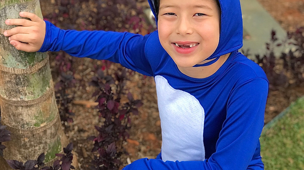 Fantasia Infantil Sonic