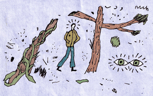 Wide eyed in the forest.jpg