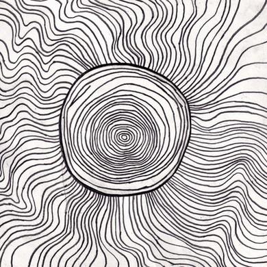 Tree rings hypnosis.jpg