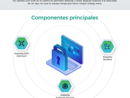 Infografía — Amplía tu Ciberseguridad sin invertir más recursos