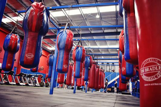 Hoppers Boxing (7).jpg