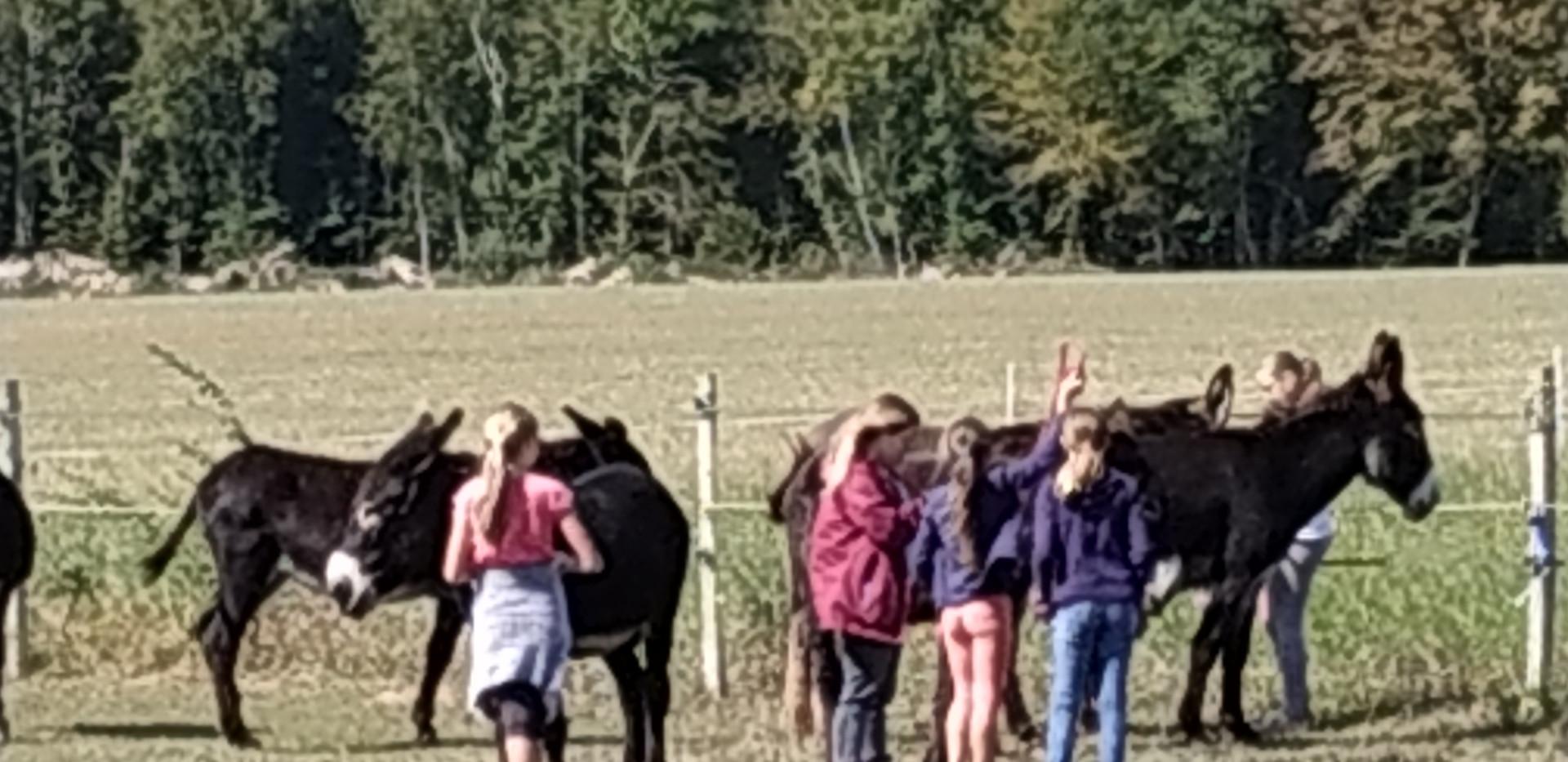 Au champ avec les enfants