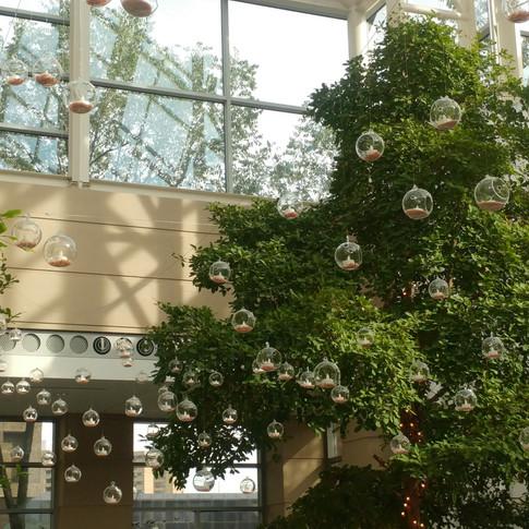 Wintergarden Custom Glass Globe Dance Floor