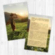 Carte postale Cueilleuse de thé éditions Charleston